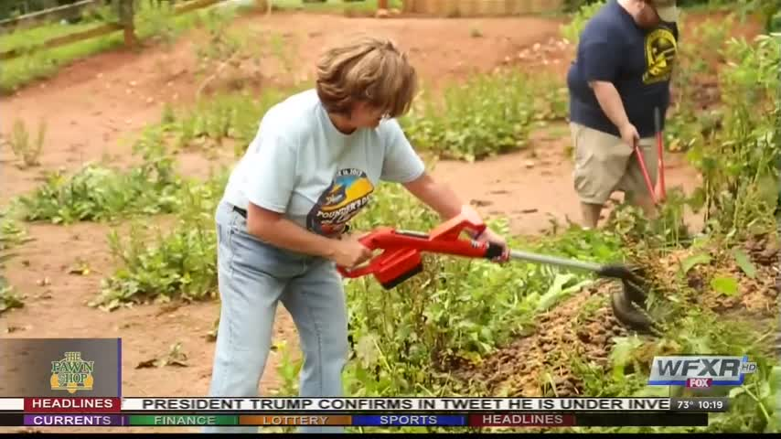 Day of Caring with WFXR