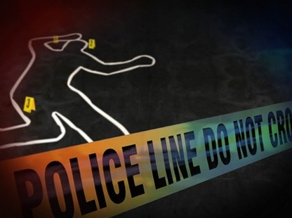 A teen was shot and killed in Danville on Friday night.
