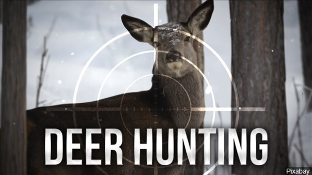 deer hunting_1554826147506.jpg_81405807_ver1.0_640_360_1554828371102.jpg.jpg