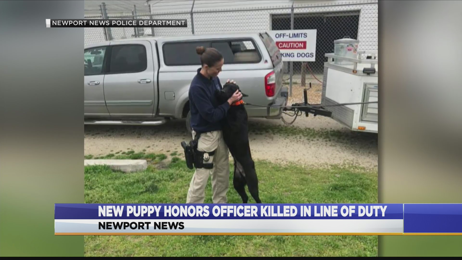 Newport News Master Police Officer Brittany Lewis, the fiancee of fallen officer Katie Thyne, spends some time with Fenway, the new K-9 donated in Officer Thyne's memory. (Photo: Courtesy Newport News Police Department)