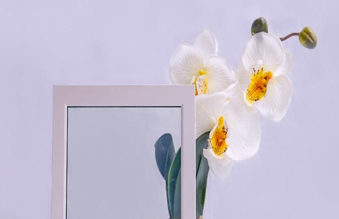 Laminated Switchable Smart Glass