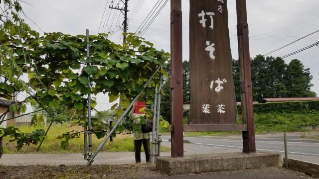 大衡「そば処 葉菜」_20190627_130914