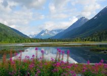 Picturesque view of Tern Lake on the Kenai penninsula with the Chugach mountains and forest in the background