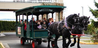 holiday carriage ride