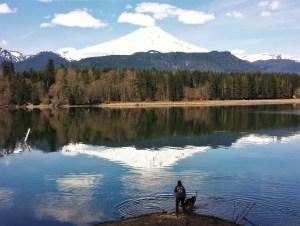 Axle the German Shepherd enjoys splashing around in Baker Lake.