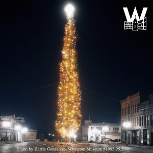 The world's Tallest Tree was once set up in downtown Bellingham. Photo credit: Harris Gonsalves, Whatcom Museum.