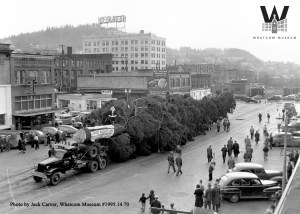 The world's tallest Christmas tree of 1949 traveled by two trucks to get to downtown Bellingham. Photo courtesy: Jack Carver, Whatcom Museum.