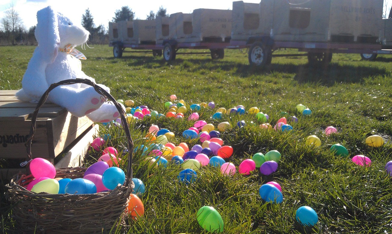 BelleWood Acres Easter Brunch and 5K Benefits Bee Research ...