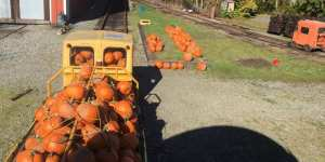 Pumpkin Patch on Rails @ Lake Whatcom Railway | Sedro-Woolley | Washington | United States