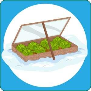 Winter Gardening @ WCLS Blaine Library   Blaine   Washington   United States