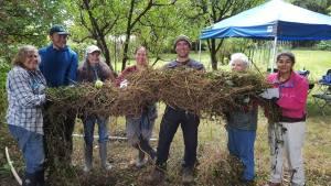 Invasive Forest Weed Control Field Practicum @ Alexander Ross Tree Farm | Bellingham | Washington | United States