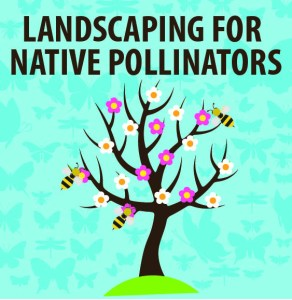 Landscaping for Native Pollinators @ WCLS South Whatcom Library | Bellingham | Washington | United States