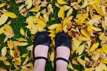 Scenic fall-foliage-feet-stacee-sledge