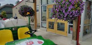 Ferndale Chamber of Commerce gets a new Gator
