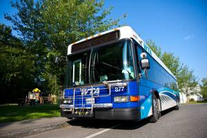 Learn to Ride the Bus on a Guided Bus Trip @ Whatcom Council of Governmenta | Bellingham | Washington | United States