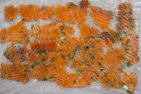 salmon ceviche-0354
