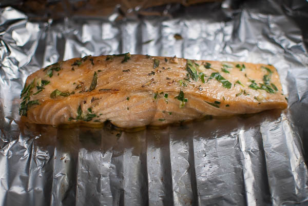 salmon herb-0228-3