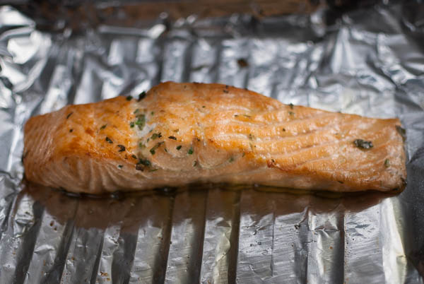 salmon herb-0230