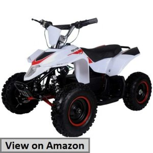 Tao 2 500 watt electric four wheeler atv