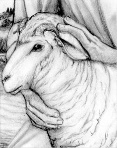 Andrew's Lamb – a Passover Story