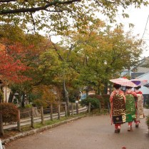 kyoto-day-3-maiko-on-the-philosophers-path_4100947681_o