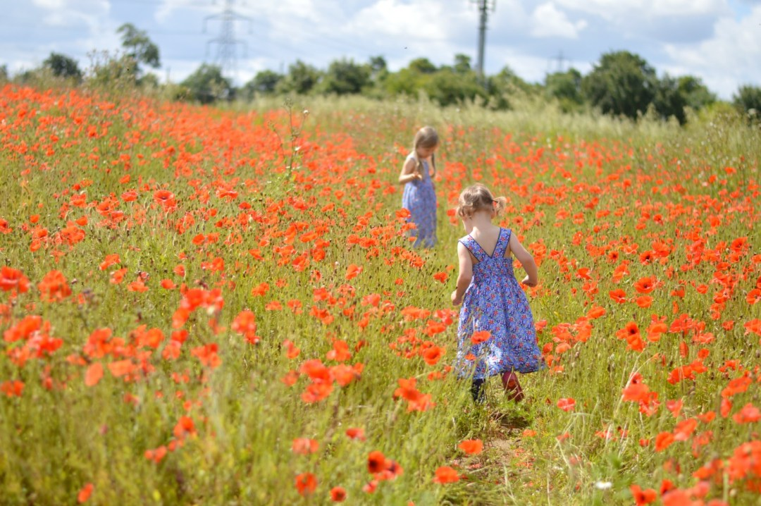 lj following g into the poppies