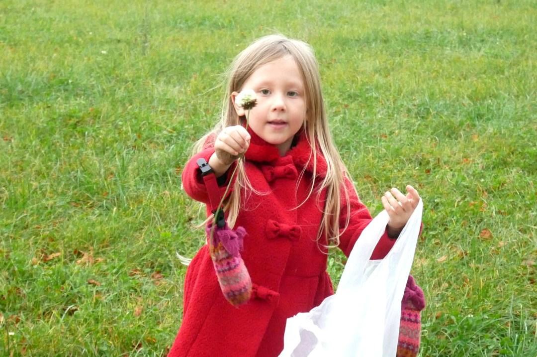 Picking flowers in winter