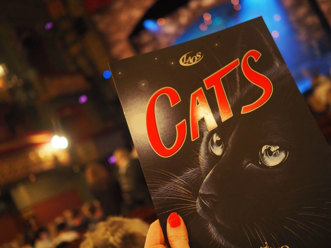 what lizzy loves cats theatre