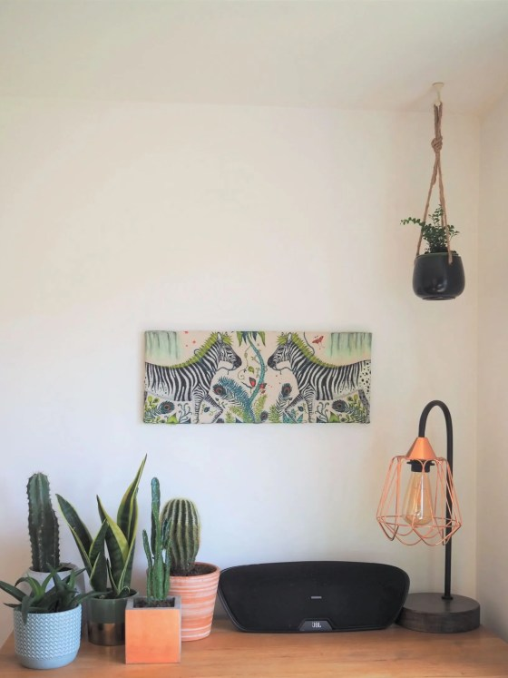cactus plants and canvas picture of zebras