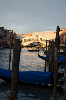 But not without a look at the Rialto bridge in the sunlight.