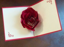 HUNGER Handmade 3D Pop Up Rose Greeting Card (Q5421)