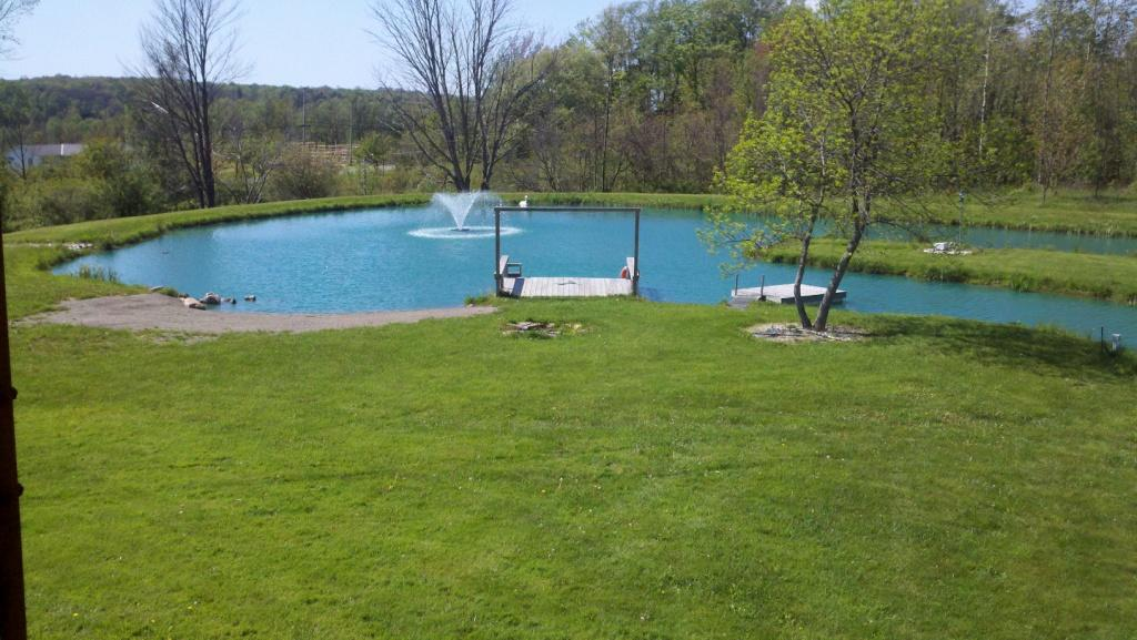 Farm Pond Advantages