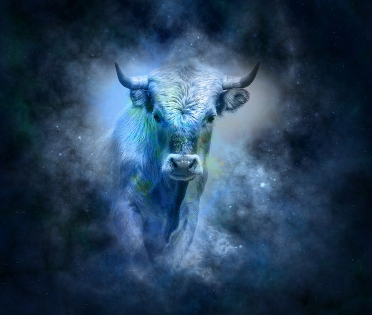 Meaningful Bull Symbols On Whats Your Sign