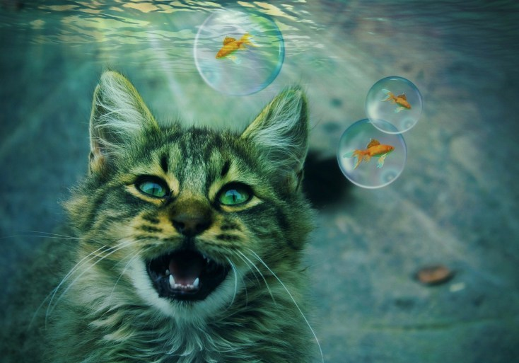 Animals In Dreams - Meanings on Whats-Your-Sign com