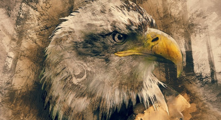 eagle tattoo meanings and eagle tattoo meanings