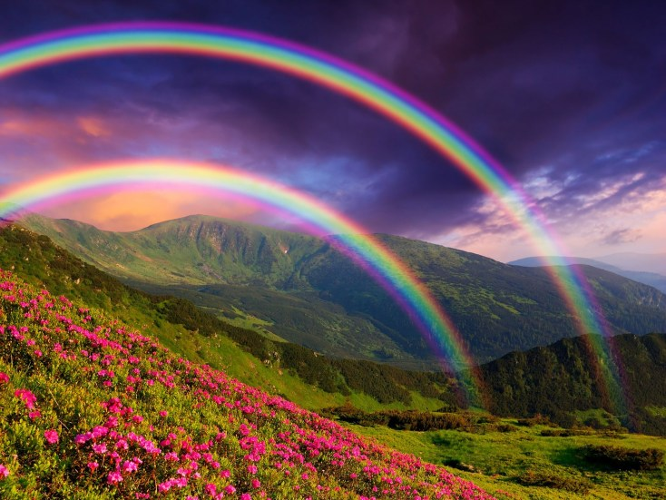 Symbolic Meaning Of Rainbows On Whats Your Sign