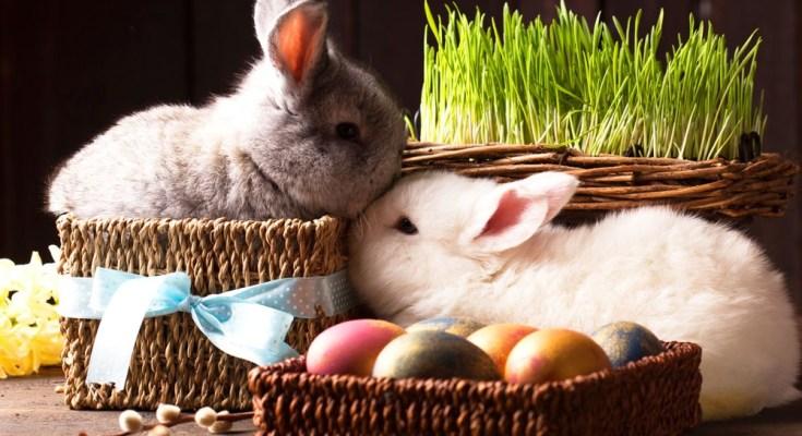 Easter meaning Easter symbols