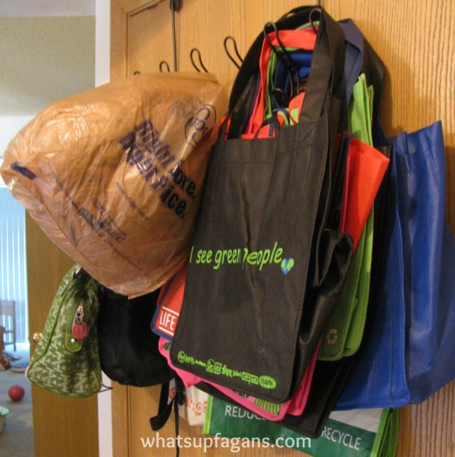10 Reasons to start using reusable bags and stop using plastic!  They fold flat!