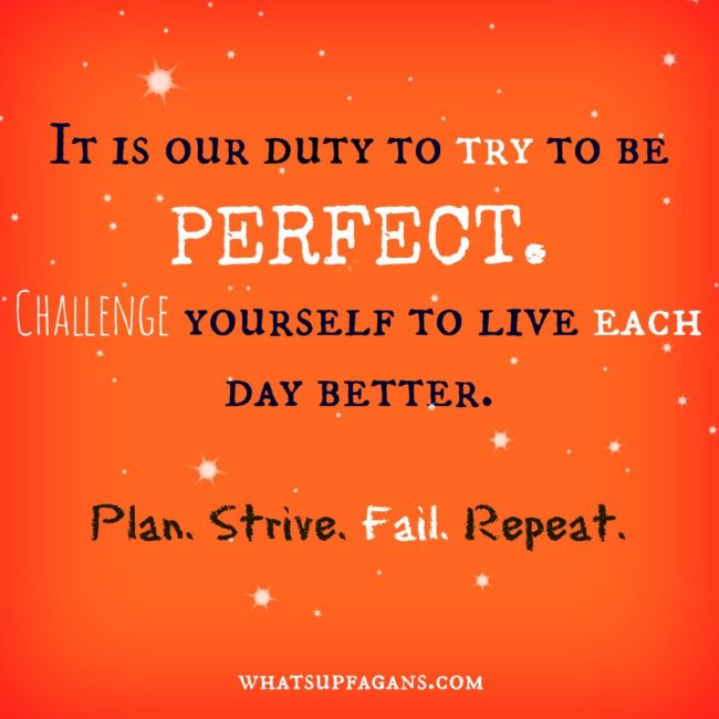 It is our duty to try to be perfect. Challenge yourself to live each day better. Plan. Strive. Fail. Repeat. whatsupfagans.com
