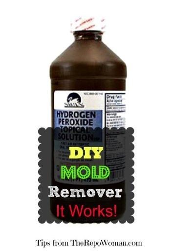DIY-Mold-Remover