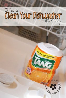 how-to-clean-dishwasher-with-tang - one creative mommy