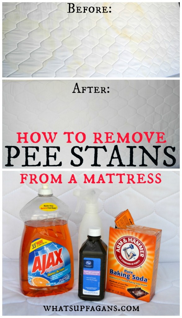 How to Remove Pee Stains from your mattress, and remove the smell! Fantastic easy tutorial on how to get urine stains out of a mattress.