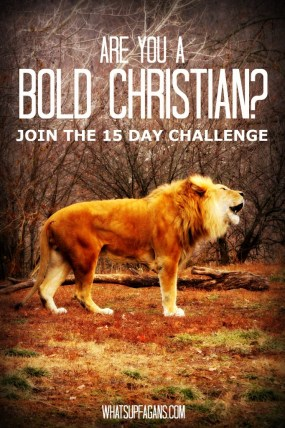 I signed up for the 15-Day #BoldChristian campaign! Come do it with me! Let's all stand for truth, faith, and Jesus Christ.