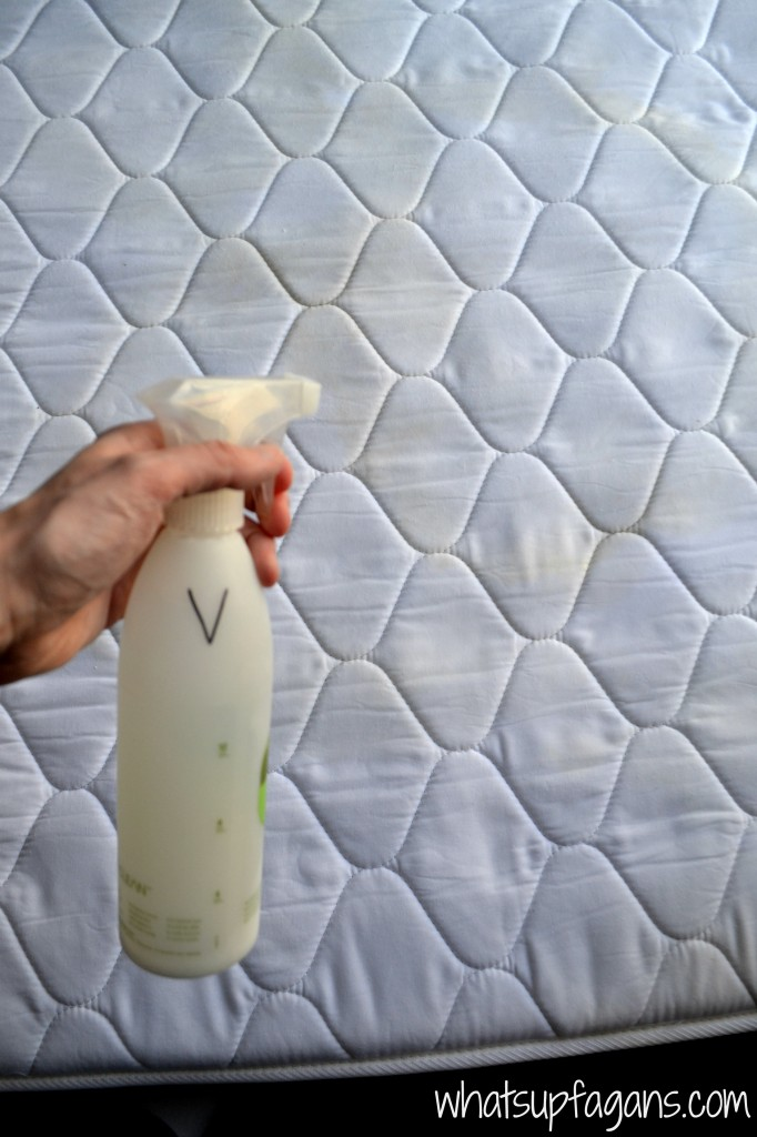 How To Easily Remove Old Pee Stain And Smell From A Mattress
