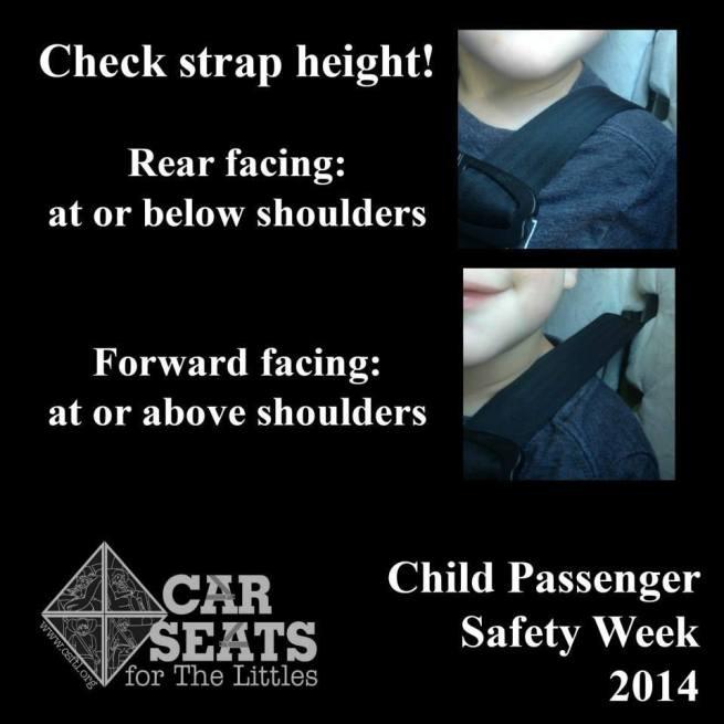 Car Seats - Shoulder Straps