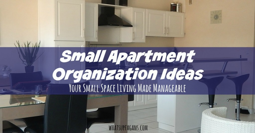 In a small apartment organization ideas are very helpful! These are some great tips, including some DIY ideas for storage solutions. These will help me manage our home.