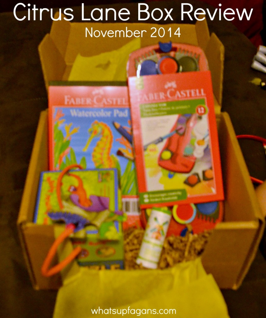 Citrus Lane Monthly Subscription Box Review of November 2014 box