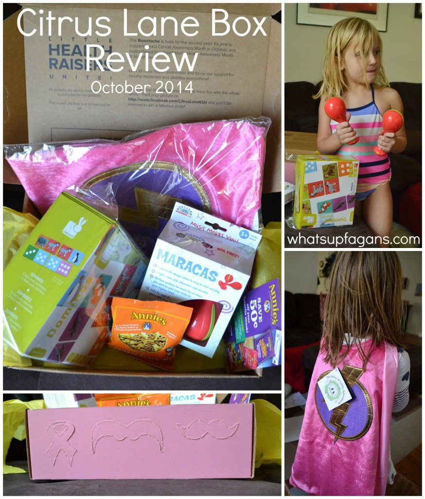 Citrus Lane Monthly Subscription Box Review - October 2014