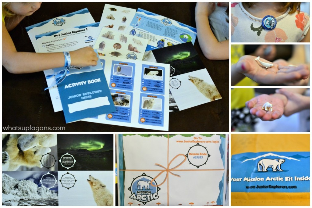 Junior Explorers Review of Arctic Mission Kit