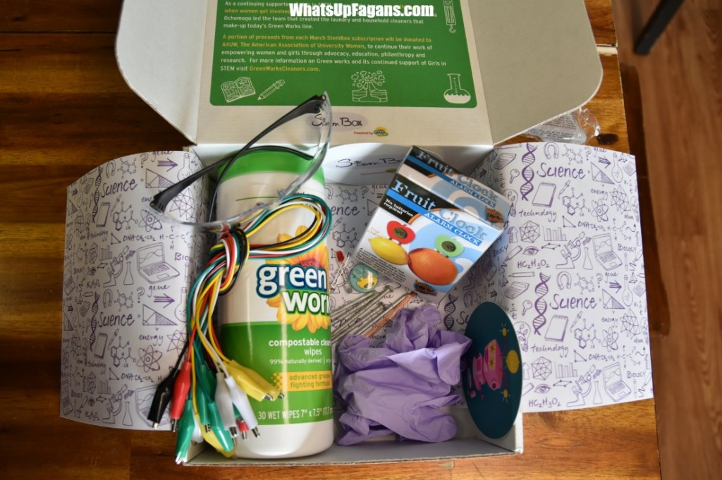 Green Works StemBox for girls